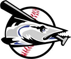 Jacksonville Beach Baseball